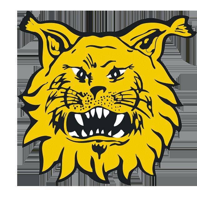 Ilves logo favicon 631px