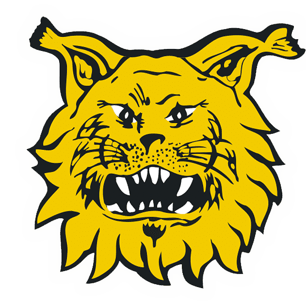 Ilves logo valkovarjolla 631px